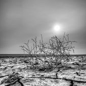 在干涸的湖,马内奇古季洛 hdr 日落 — 图库照片