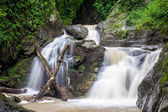 High and wide waterfall in forest — Stock Photo