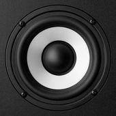 Black & white speaker — Stock Photo