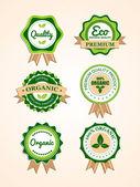 Set de badges organiques vector — Vecteur