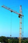 Crane — Стоковое фото