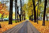 Дорога в Осенний парк — Стоковое фото