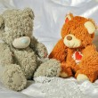 Grey and brow bears in the bedroom — Stock Photo