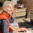 Stock Photo: Elderly wombehind computer