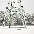 Stock Photo: Electric poles in winter