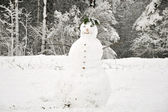 Snowman on forest background — Stockfoto