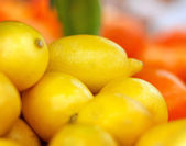 Group of lemon — Foto de Stock