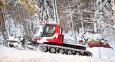Winter forest with snow thrower — Stockfoto