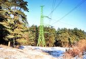 Green electric pole — Stock Photo