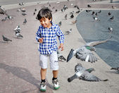Boy playing on the square with pigeons — Stock Photo