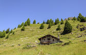 Cuneaz (Aosta Valley - North Italy) Stone house — Stock Photo