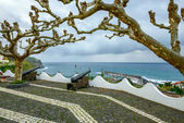 Cannons in Lajes das Flores, Azores archipelago (Portugal) — Stock Photo