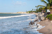海滩在涨潮时,pititinga,产后 (巴西) — 图库照片