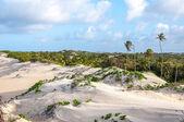 Sand dunes, Pititinga, Natal (Brazil) — Stockfoto