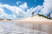 Sand dunes, Pititinga, Natal (Brazil) — Foto Stock