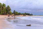 Beach at low tide, Pititinga, Rio Grande do Norte (Brazil) — Stock Photo
