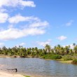 Flooded area, beach of Pititinga, Natal - Rio Grande do Norte (B — Stock Photo #42486079