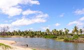 洪泛的区,pititinga,产后-里奥格兰德海滩北里 (b — 图库照片
