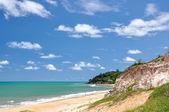 海滩上的琵琶,产后 (巴西) — 图库照片