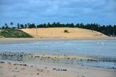 Pititinga、ナタール、リオグランデ ド ノルテ (ブラジルのビーチ) — ストック写真