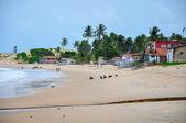 ビーチ、pititinga、出生 (ブラジルを歩く人) — ストック写真