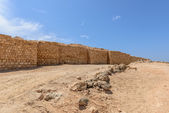Archaeological site of Sumhuram, Dhofar region (Oman) — Photo