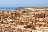 Archaeological site of Sumhuram, Dhofar region (Oman) — Стоковое фото