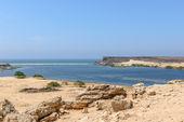 Archaeological site of Sumhuram, Dhofar region (Oman) — Stock Photo