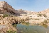 Kanion wadi popiołu shuwaymiyyah (oman) — Zdjęcie stockowe
