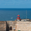 Постер, плакат: Lighthouse on Forte do Morro Nazare Portugal