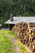 Woodpile and log house with stone roof, Cuneaz (Italy) — 图库照片