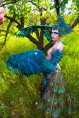 Girls dressed Firebird — Stock Photo