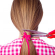 Woman with long hair and scissors cutting — Stock Photo #33056905