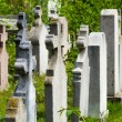 Old graves headstones — Stock Photo #34656961
