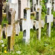 Old graves headstones — Stock Photo #34656963