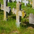 Old graves headstones — Stock Photo