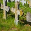 Old graves headstones — Stock Photo #34656977
