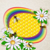 Daisy flower and bee over the honeycombs and rainbow background — Vecteur