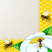 Bees with flowers over honeycomb background — Vector de stock