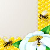 Bienen mit blumen über waben-hintergrund — Stockvektor