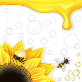 Sunflowers and bees over honeycombs background — Vetorial Stock