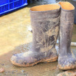 Muddy rubber boots — Stock Photo