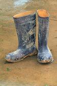 Stivali in gomma — Foto Stock
