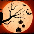 Owl sitting on tree in Halloween Night — Stock Vector