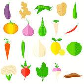 Vegetable Icon — Stock Vector
