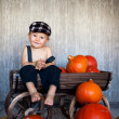 Boy with a trolley and pumpkins — Stock Photo