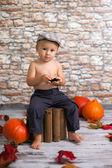 Jongen met een kar en pompoenen — Stockfoto