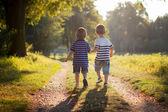 Zwei Brüder im Park, gehen zusammen — Stockfoto