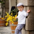 Charming boy with flowers, waiting for his lady  — ストック写真