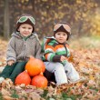 Two boys with a suitcase and pumpkins  — Stock Photo